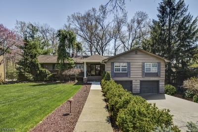 Livingston Twp. Single Family Home For Sale: 12 Consul Rd