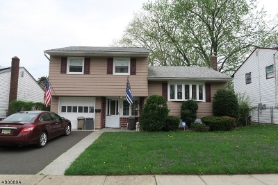 Roselle Boro Single Family Home For Sale: 224 Holly Dr
