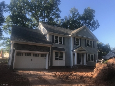 New Providence Boro Single Family Home For Sale: 4 6th St