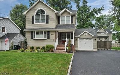 Scotch Plains Twp. Single Family Home For Sale: 2111 Newark Ave