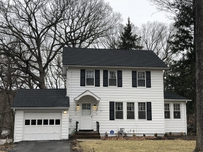 Boonton Town Single Family Home For Sale: 222 Rockaway St