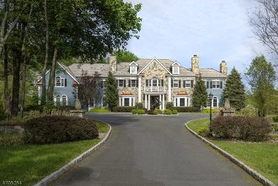 Far Hills Boro Single Family Home For Sale: 5 Fox Hunt Ct