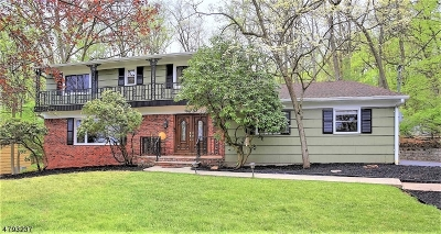 WATCHUNG Single Family Home For Sale: 51 Pine Ln