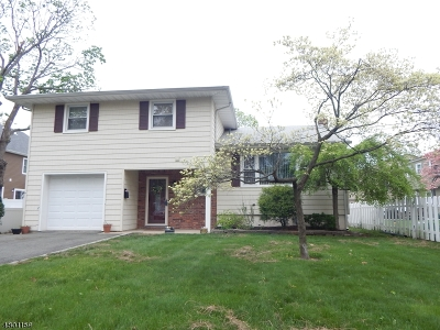 Scotch Plains Twp. Single Family Home For Sale: 2024 Mountain Ave