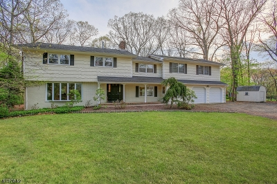 WARREN Single Family Home For Sale: 6 Christy Drive