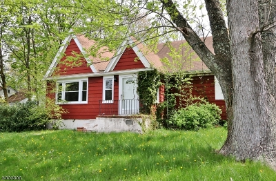Hanover Twp. Single Family Home For Sale: 226 Parsippany Rd