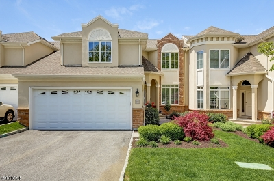 Essex County, Morris County, Union County Condo/Townhouse For Sale: 36 Metzger Dr