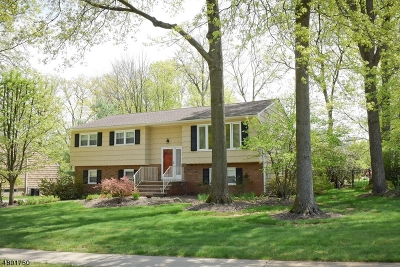 Hanover Twp. Single Family Home For Sale: 25 Juniper Drive