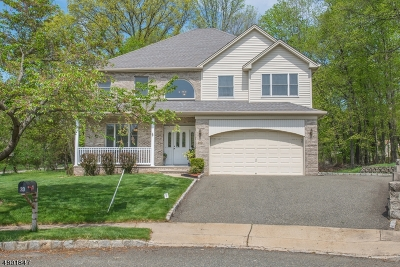 Boonton Town Single Family Home For Sale: 20 Greenbriar Ct