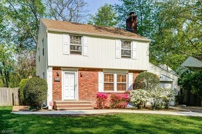 Springfield Twp. Single Family Home For Sale: 61 Denham Rd