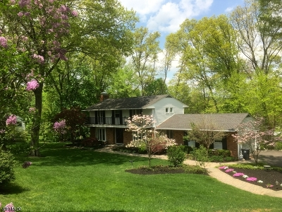 Morris Twp. Single Family Home For Sale: 21 Hilltop Cir