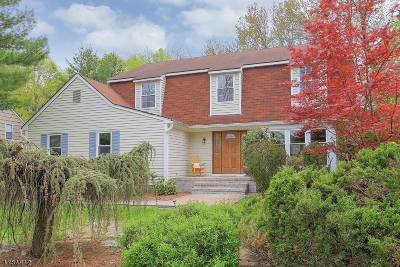 Morris Twp. Single Family Home For Sale: 2 Applewood Ln