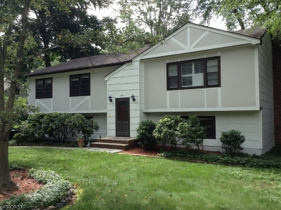 Chatham Twp. Single Family Home For Sale: 209 Southern Blvd