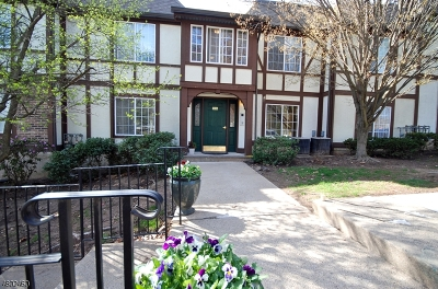 Morristown Town Condo/Townhouse For Sale: 114 Village Dr #114