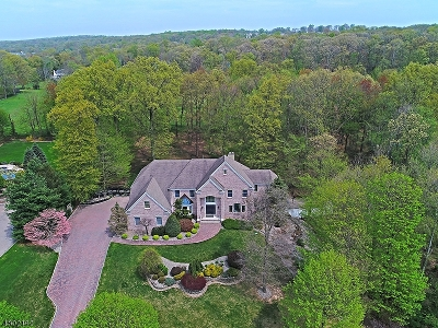 WARREN Single Family Home For Sale: 12 Mattben Dr