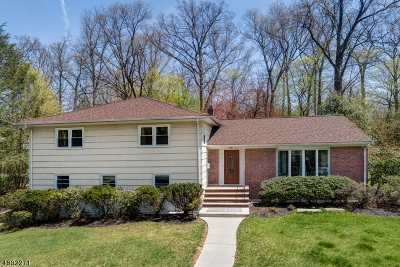 Livingston Twp. Single Family Home For Sale: 78 N Livingston Ave