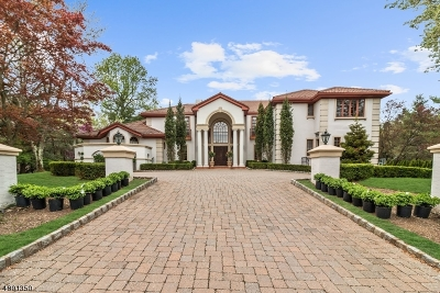 Livingston Twp. Single Family Home For Sale: 22 Mountain Ridge Dr