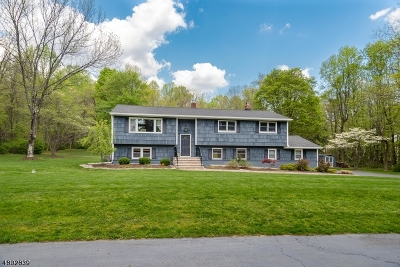 Randolph Twp. Single Family Home For Sale: 109 Pleasant Hill Road