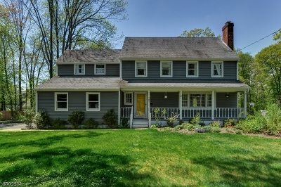 New Providence Boro Single Family Home For Sale: 191 Maple St