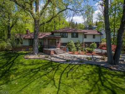 Livingston Twp. Single Family Home For Sale: 18 Orchard Ln