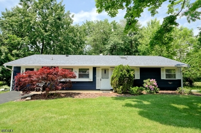 South Brunswick Twp. Single Family Home For Sale: 79 Stillwell Rd