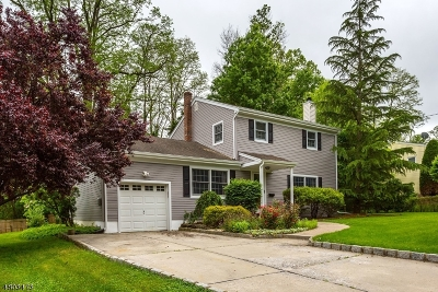 East Brunswick Twp. Single Family Home For Sale: 18 Clearview Rd