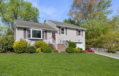 Parsippany-Troy Hills Twp. Single Family Home For Sale: 5 Friar Rd