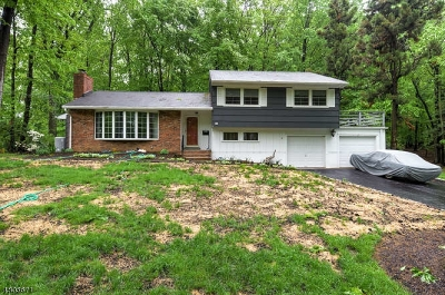 Morris Plains Boro Single Family Home For Sale: 18 Forest Dr