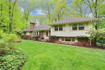 Berkeley Heights Twp. Single Family Home For Sale: 70 Winchip Road