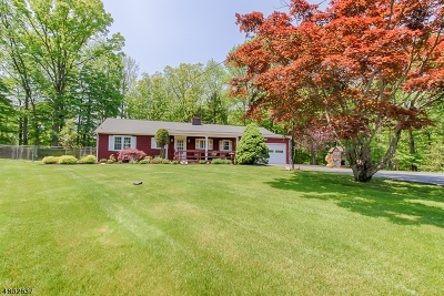 Parsippany-Troy Hills Twp. Single Family Home For Sale: 7 Edgewood Ct