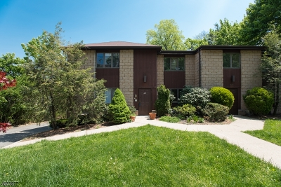 Montclair Twp. Condo/Townhouse For Sale: 56 Gates Ave, C0004 #4