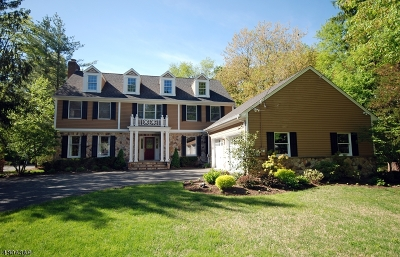 Chatham Twp. Single Family Home For Sale: 272 Lafayette Ave