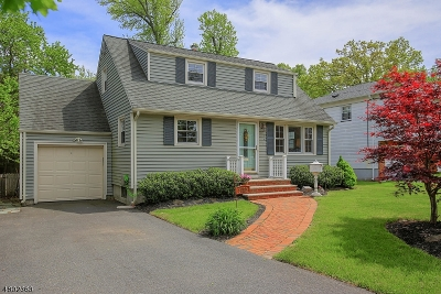 Scotch Plains Twp. Single Family Home For Sale: 2250 Algonquin Dr