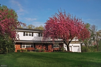 Livingston Twp. Single Family Home For Sale: 75 Edgemere Rd