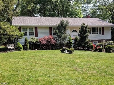 Clark Twp. Single Family Home For Sale: 96 Amelia Dr