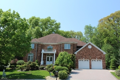 Springfield Twp. Single Family Home For Sale: 26 Rons Edge Rd