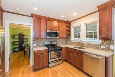 Morris Twp. Single Family Home For Sale: 24 Mill Rd