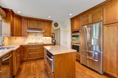 West Orange Twp. Single Family Home For Sale: 19 Davey Dr