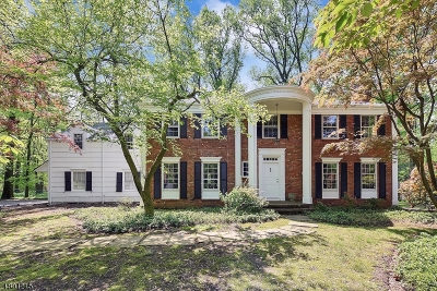 Morris Twp. Single Family Home For Sale: 33 Rolling Hill Dr