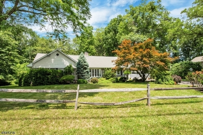 Morris Plains Boro Single Family Home For Sale: 50 Sun Valley Way