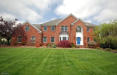 Randolph Twp. Single Family Home For Sale: 19 Quail Run