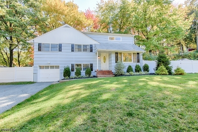 Morris Twp. Single Family Home For Sale: 21 Maxine Dr
