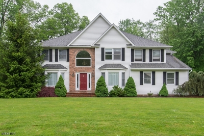 Parsippany-Troy Hills Twp. Single Family Home For Sale: 26 Lenard Way