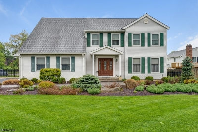 Boonton Town Single Family Home For Sale: 225 Toner Rd