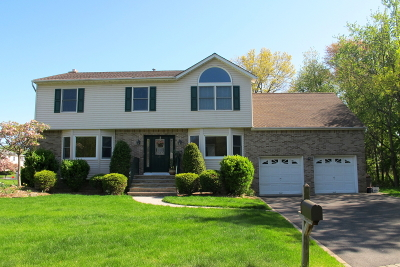Parsippany-Troy Hills Twp. Single Family Home For Sale: 25 Brighton Terrace