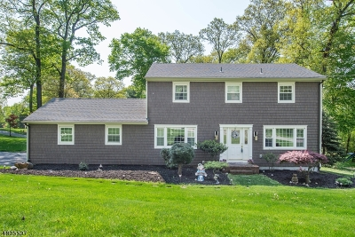 Randolph Twp. Single Family Home For Sale: 57 Misty Mountain Road
