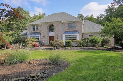 WARREN Single Family Home For Sale: 20 Old Dutch Rd