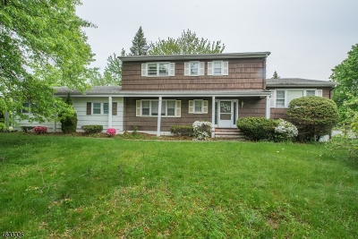 Parsippany-Troy Hills Twp. Single Family Home For Sale: 380 Vail Rd