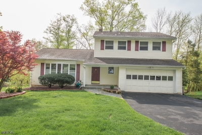 Randolph Twp. Single Family Home For Sale: 54 Radtke Rd