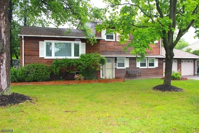 CRANFORD Single Family Home For Sale: 37 Harvard Road